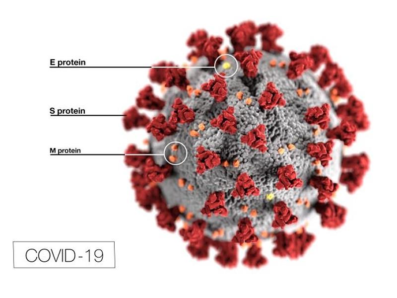 Intravenozni vitamin C i korona virus