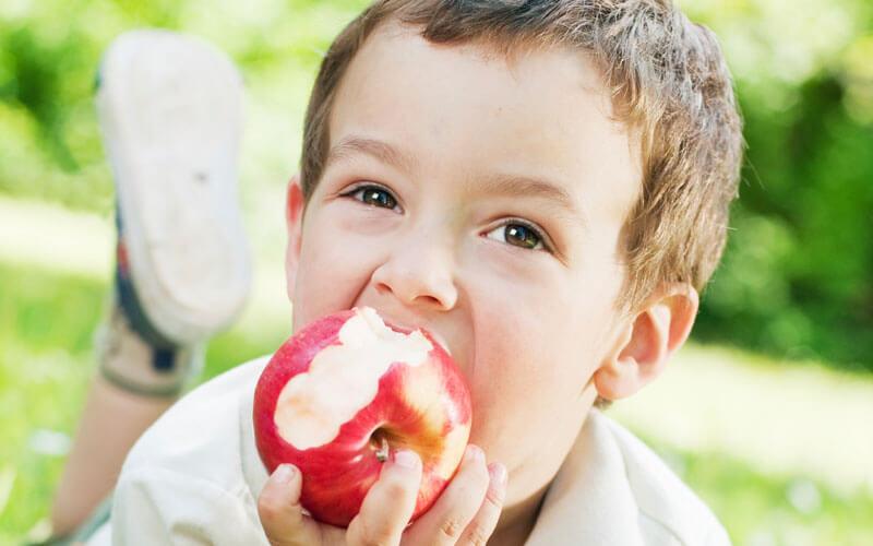 Jabuka čuvar zdravlja